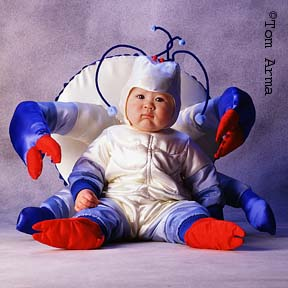33 Cute Halloween Costumes For Babies Pigs Bumblebees Mermaids  sc 1 st  The Best Crab 2018 & Baby Crab Costume - The Best Crab 2018