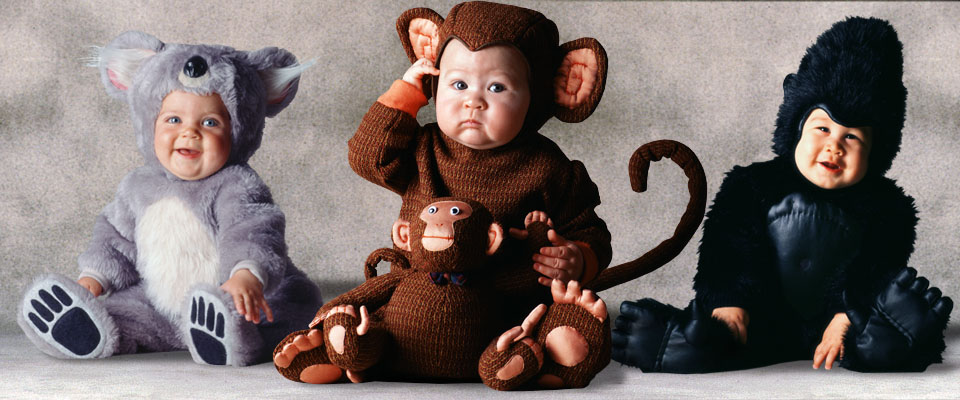 Koala, Monkey with doll, and Gorilla baby costumes from the Tom Arma Signature collection for Halloween designed by renown baby photographer Tom Arma.